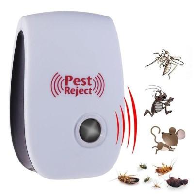 insecte rozatoare